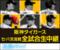 阪神猛虎交流戦生中継 (2017 May)