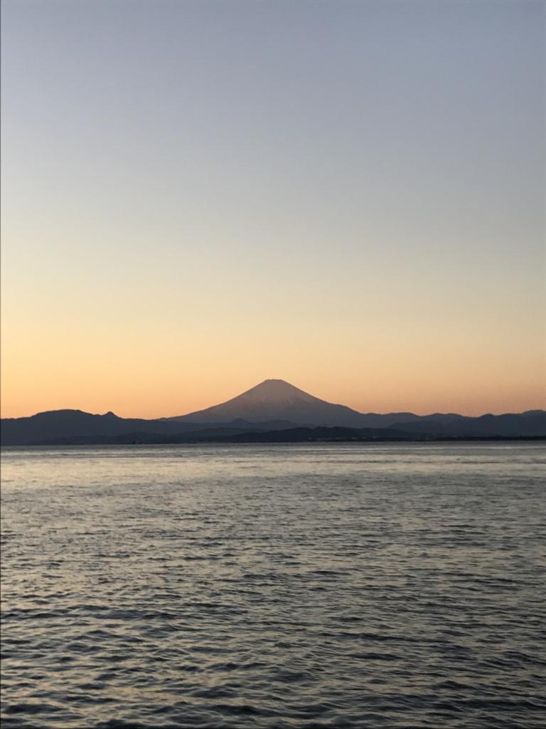 f:id:pua-manu:20170102231302j:plain