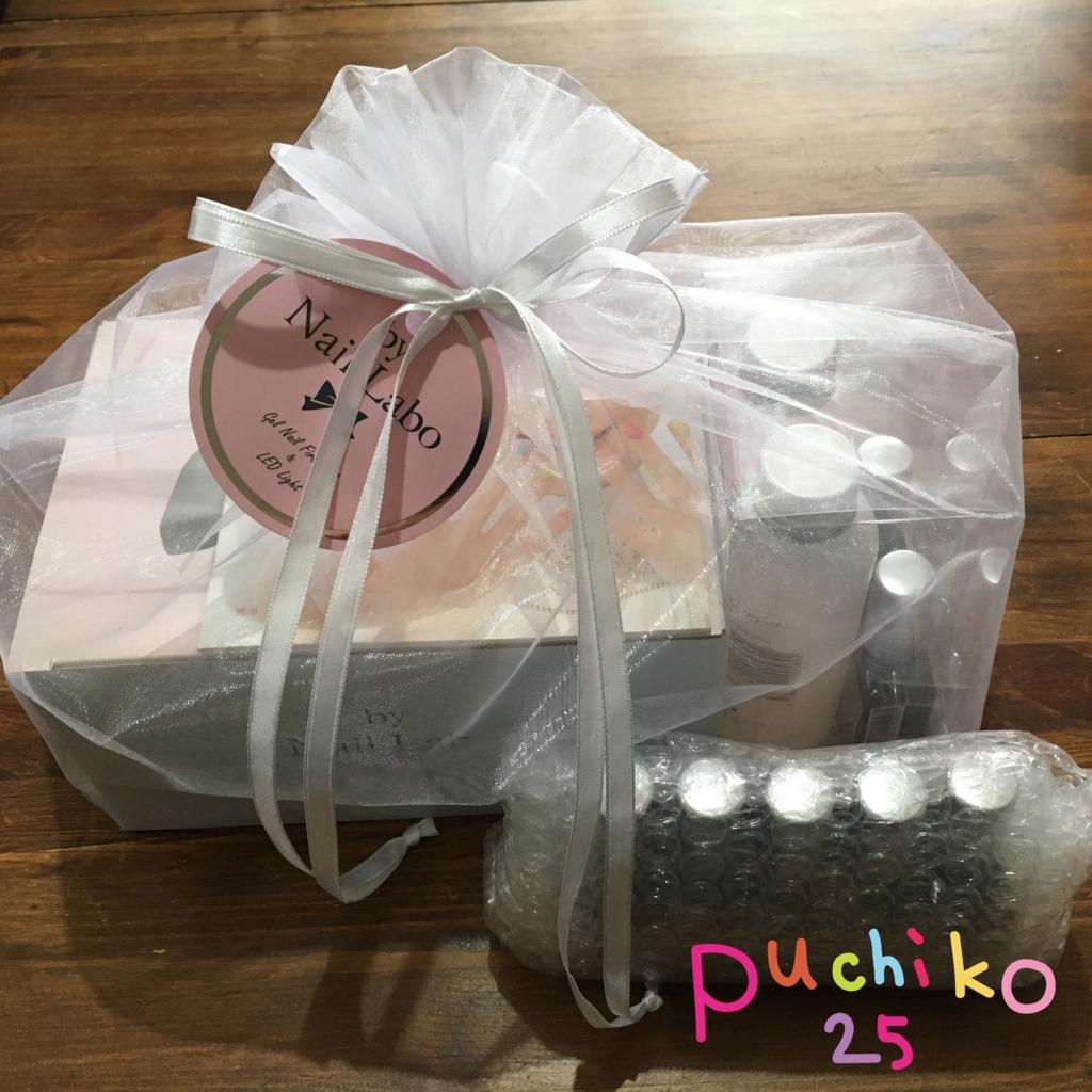 f:id:puchiko25:20170107165642j:plain