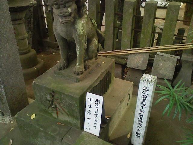 f:id:puchitenshi:20101120022935j:image