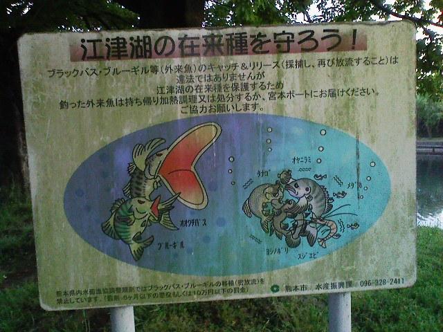 f:id:puchitenshi:20110516010333j:image