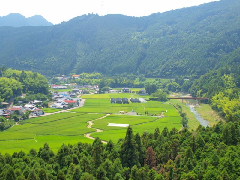 f:id:puchitenshi:20110803130306j:image