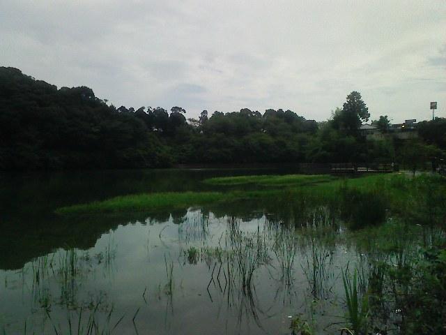 f:id:puchitenshi:20110824184128j:image