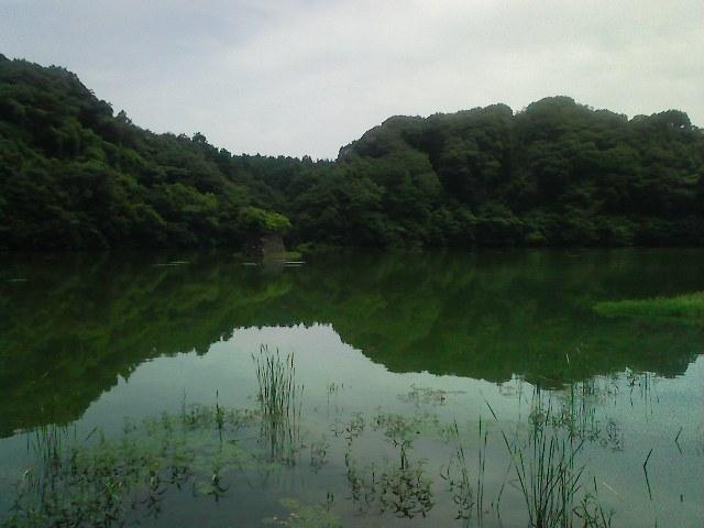 f:id:puchitenshi:20110824184139j:image