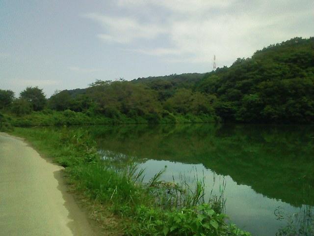 f:id:puchitenshi:20110824184148j:image