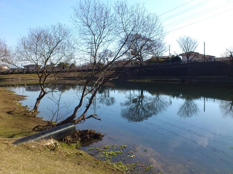 f:id:puchitenshi:20120221013549j:image