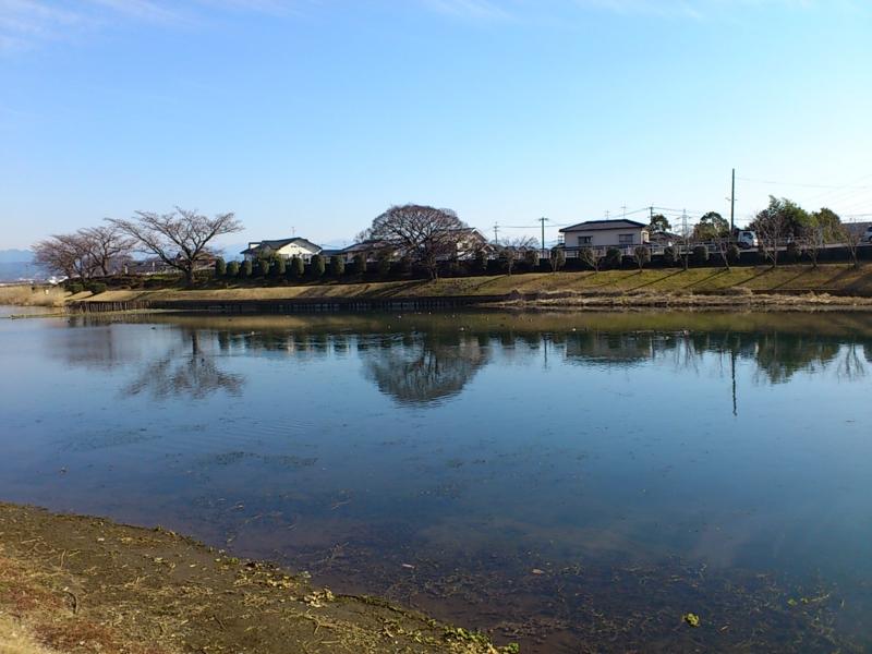 f:id:puchitenshi:20120221013550j:image