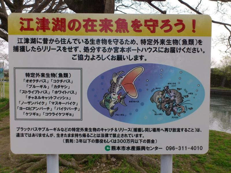 f:id:puchitenshi:20120330165107j:image