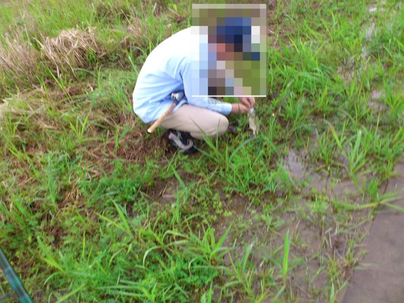 f:id:puchitenshi:20120503000714j:image