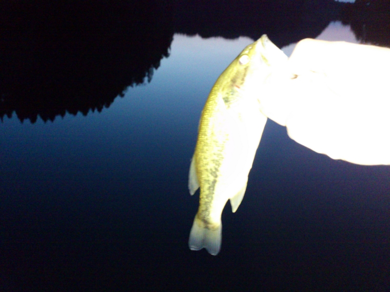 f:id:puchitenshi:20120512193858j:image