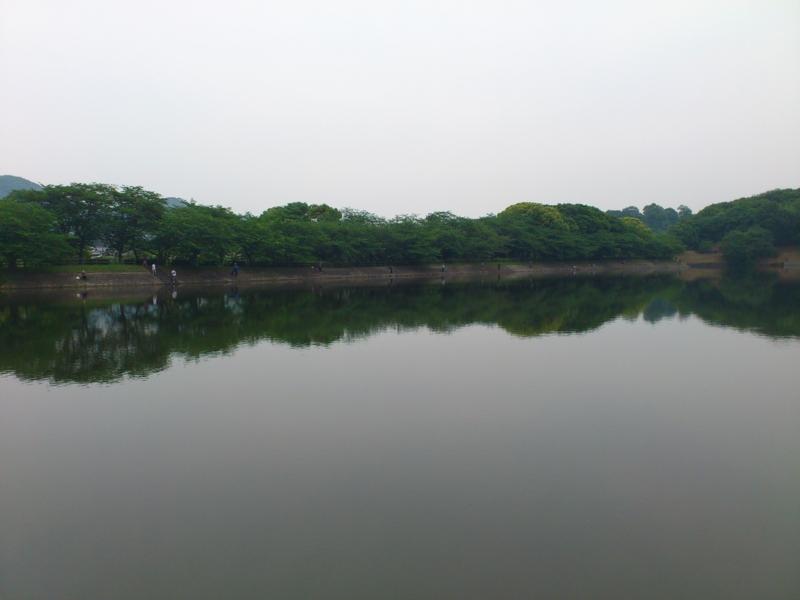 f:id:puchitenshi:20120513205219j:image