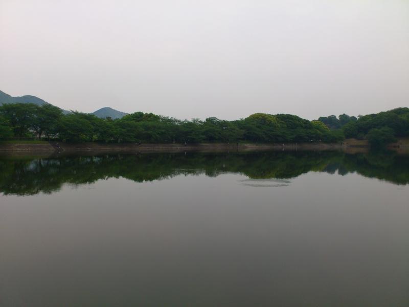 f:id:puchitenshi:20120513205259j:image