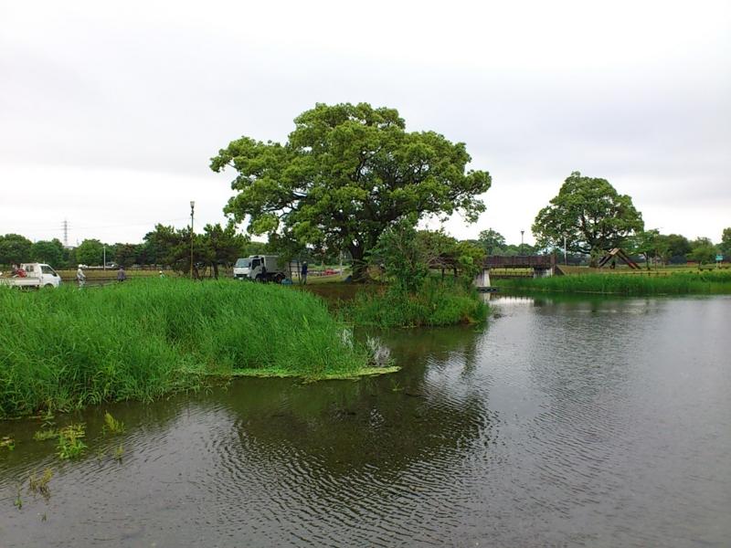 f:id:puchitenshi:20120608161208j:image