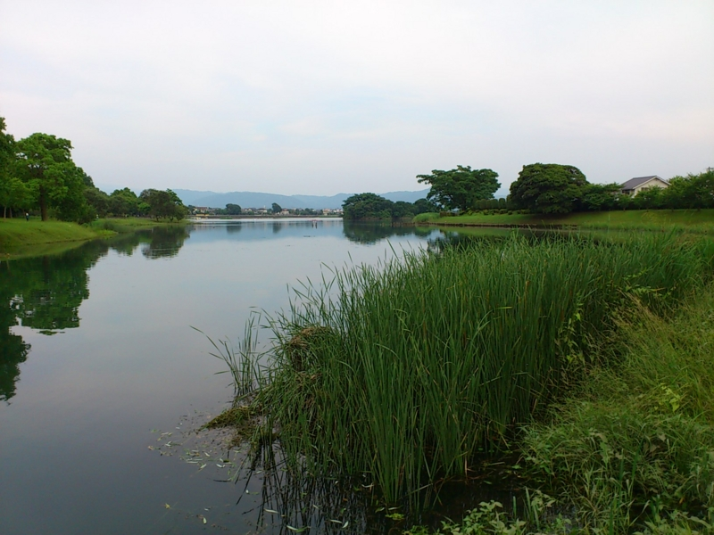 f:id:puchitenshi:20120622173008j:image