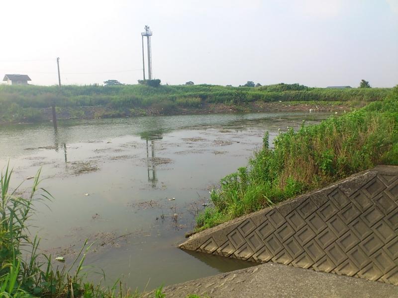 f:id:puchitenshi:20120725161336j:image