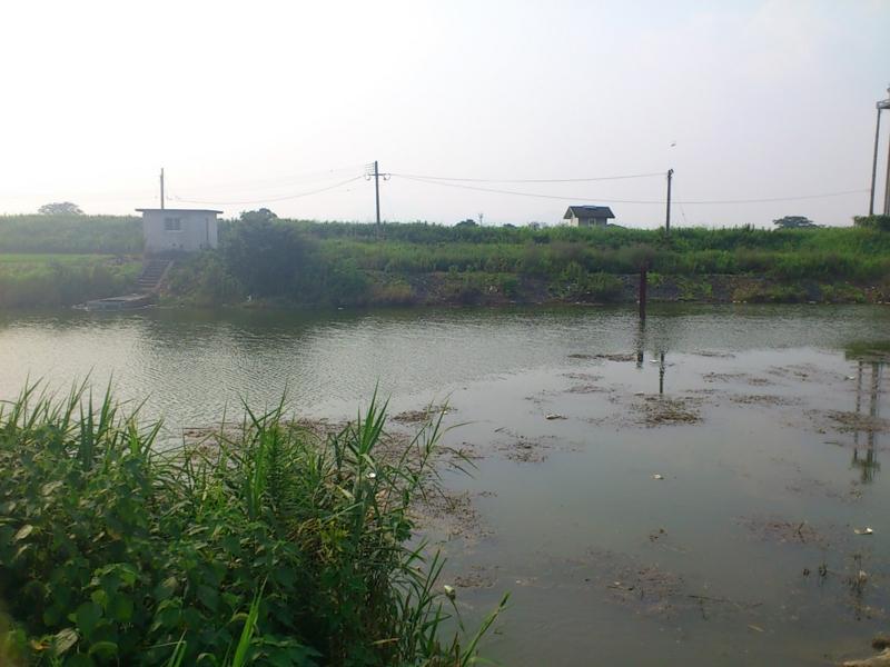 f:id:puchitenshi:20120725161344j:image