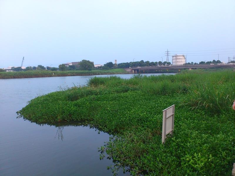 f:id:puchitenshi:20120726191246j:image