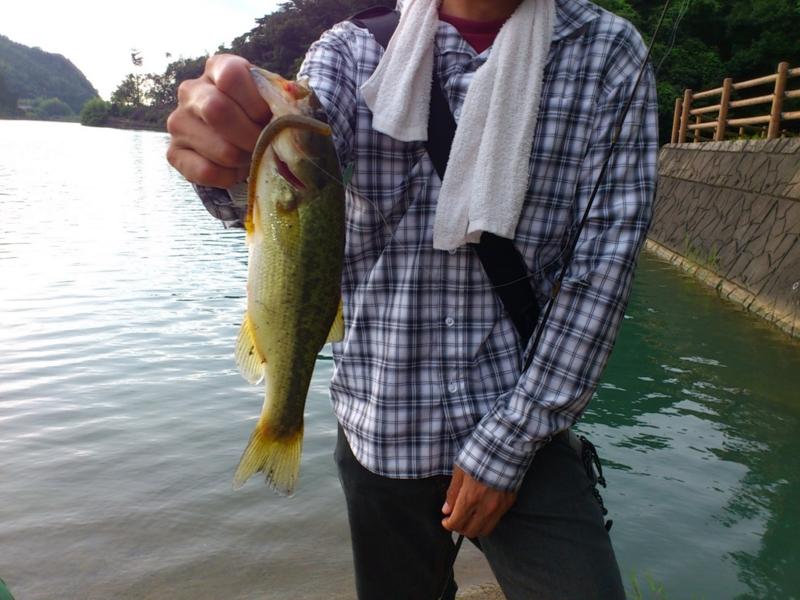 f:id:puchitenshi:20120727170808j:image