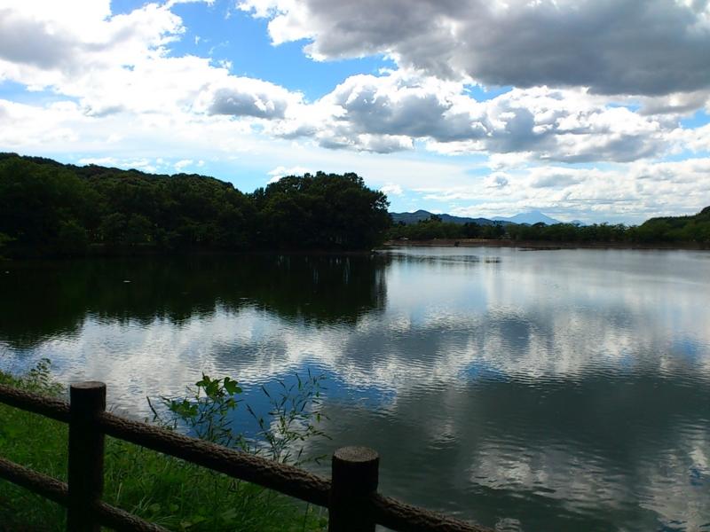 f:id:puchitenshi:20120802150538j:image