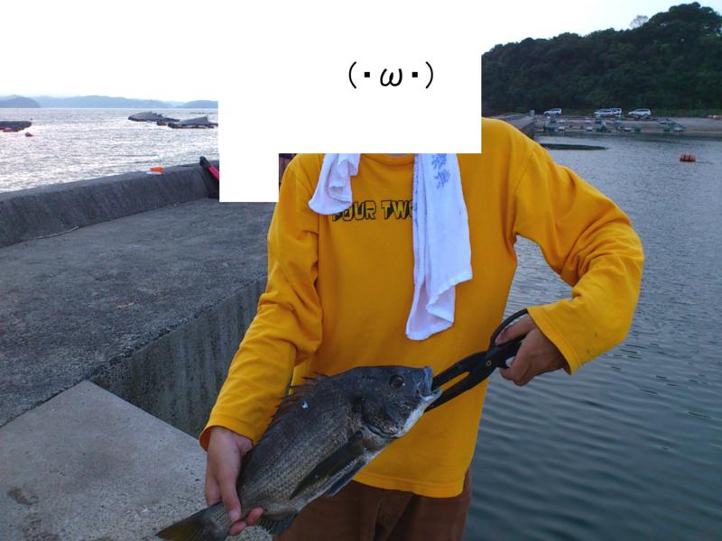 f:id:puchitenshi:20120810165331j:image