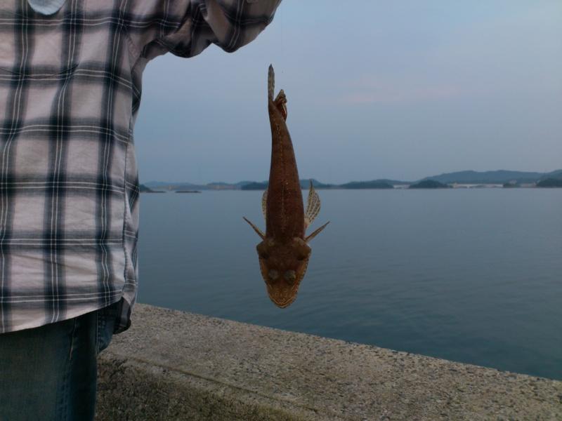 f:id:puchitenshi:20120810182733j:image