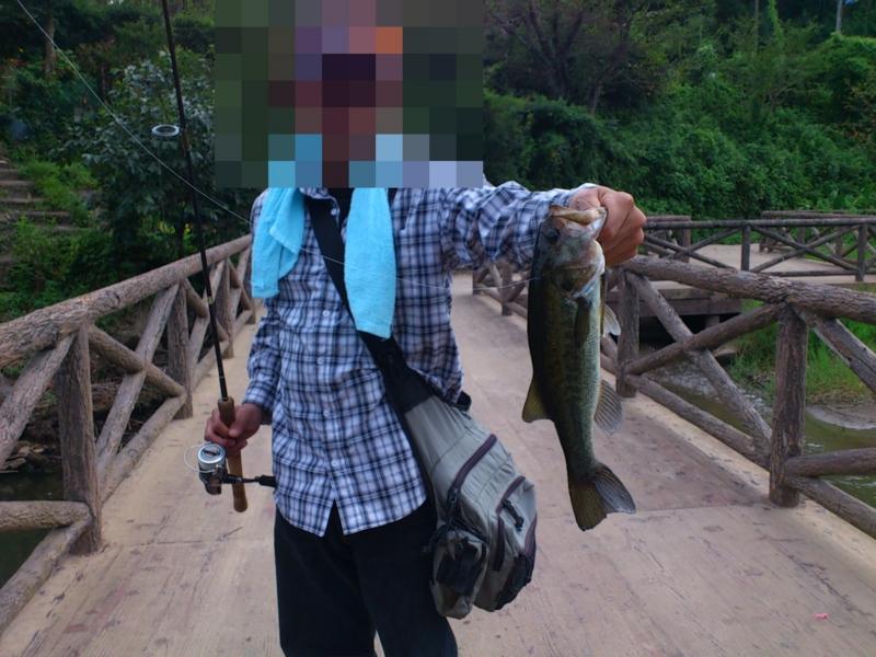 f:id:puchitenshi:20120814003225j:image