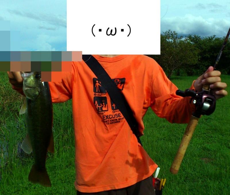 f:id:puchitenshi:20120821233747j:image