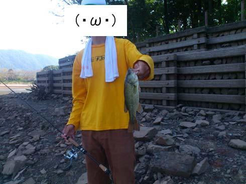 f:id:puchitenshi:20120905130624j:image