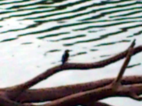 f:id:puchitenshi:20120911235422j:image