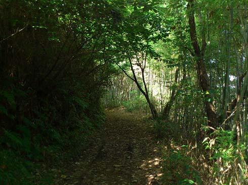 f:id:puchitenshi:20120911235524j:image