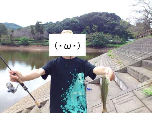 f:id:puchitenshi:20120918235321j:image