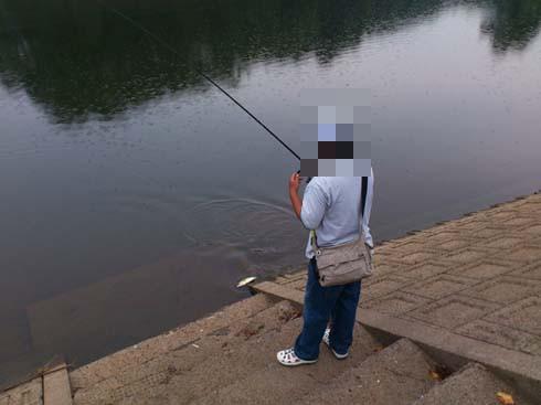 f:id:puchitenshi:20120923154634j:image