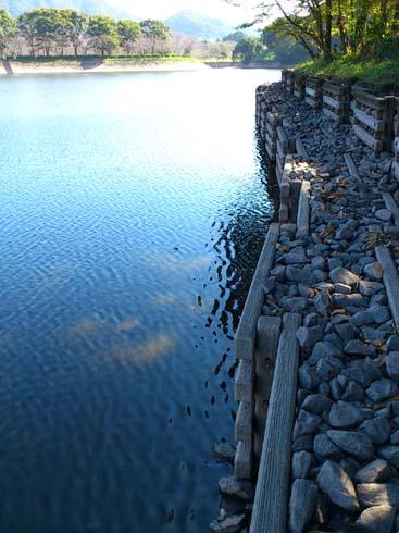 f:id:puchitenshi:20121002220220j:image