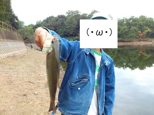 f:id:puchitenshi:20121016031034j:image
