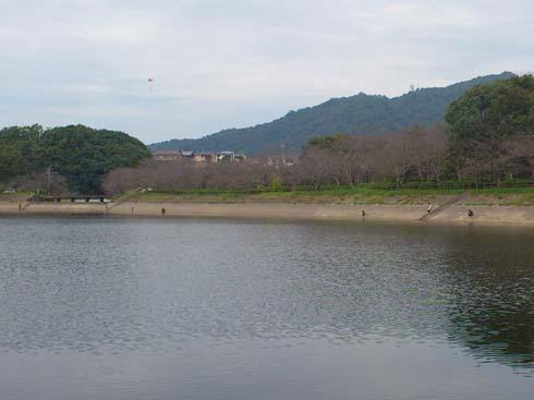f:id:puchitenshi:20121016031044j:image