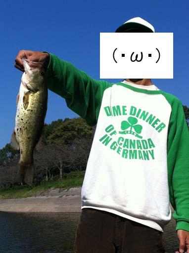 f:id:puchitenshi:20121017083613j:image