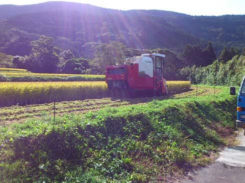 f:id:puchitenshi:20121019093101j:image