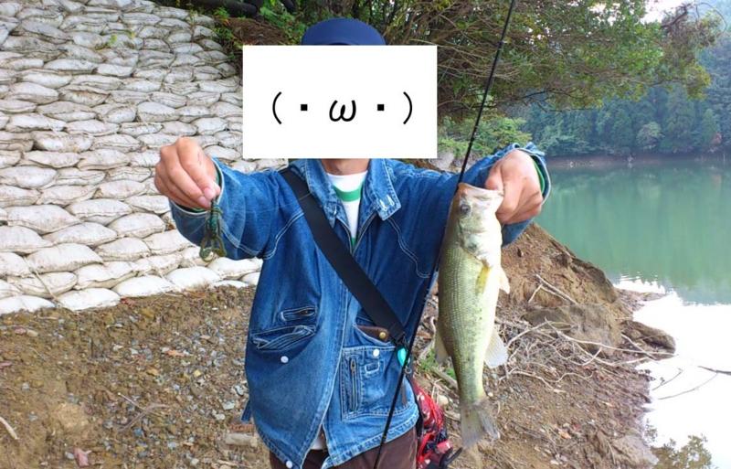 f:id:puchitenshi:20121103014235j:image