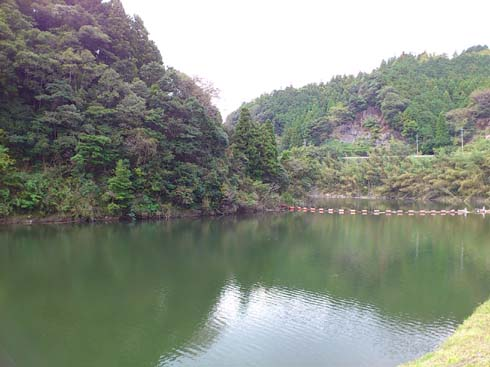 f:id:puchitenshi:20121104203602j:image