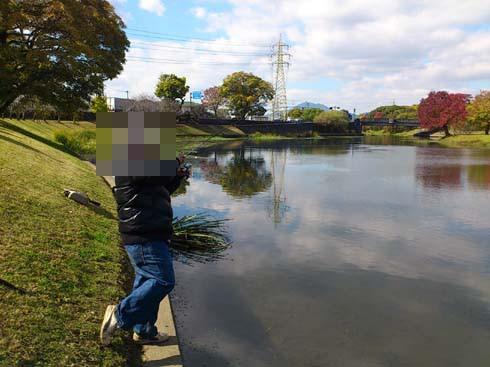 f:id:puchitenshi:20121116030526j:image