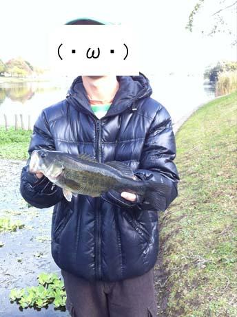 f:id:puchitenshi:20121120012129j:image