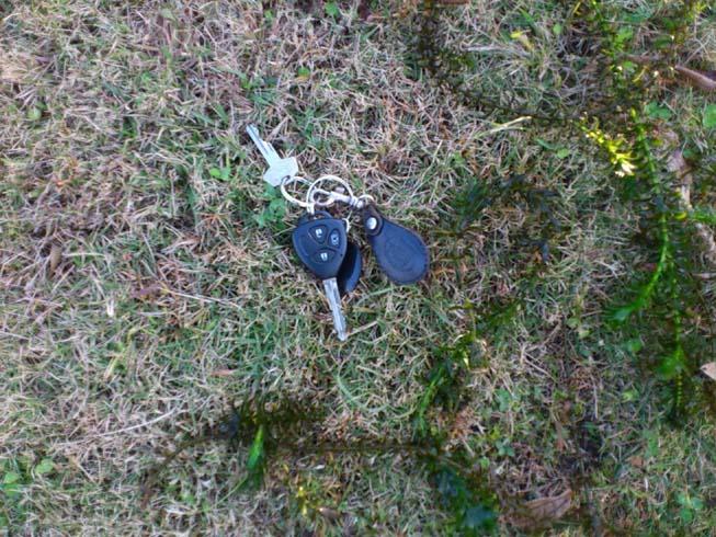 f:id:puchitenshi:20121120012307j:image