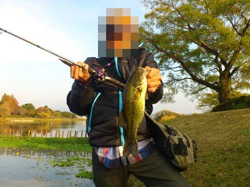 f:id:puchitenshi:20121127005018j:image