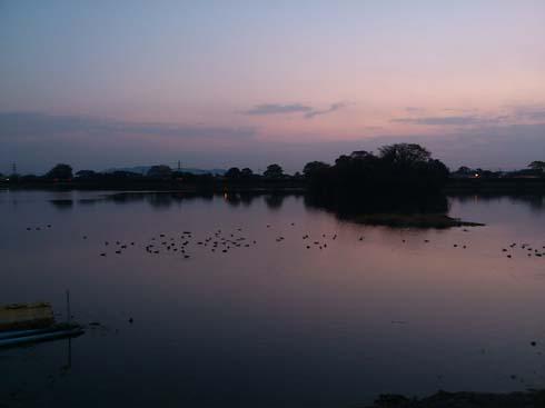 f:id:puchitenshi:20121127005254j:image