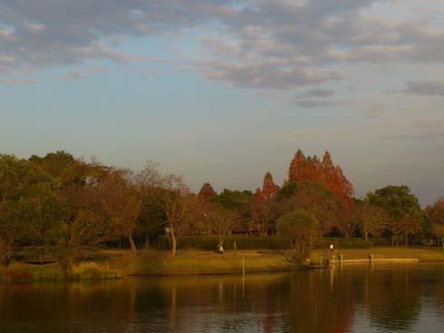 f:id:puchitenshi:20121201013451j:image