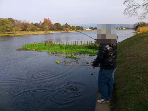 f:id:puchitenshi:20121208010138j:image