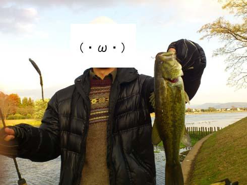 f:id:puchitenshi:20121208010202j:image