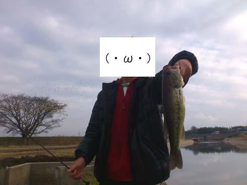 f:id:puchitenshi:20130101001949j:image