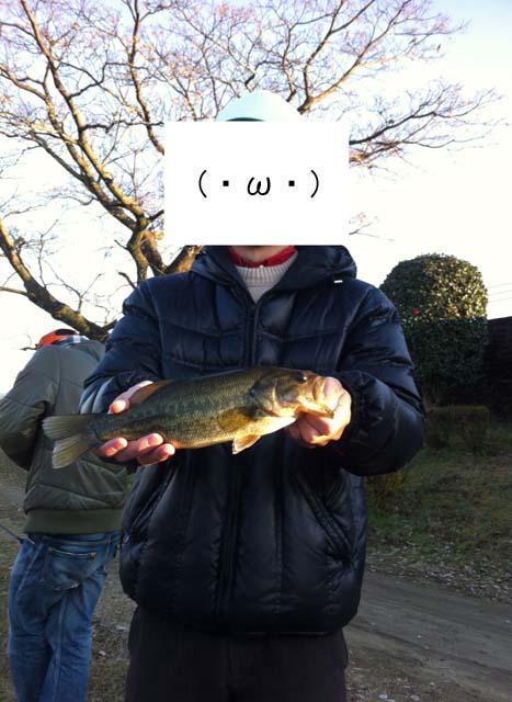 f:id:puchitenshi:20130108000110j:image