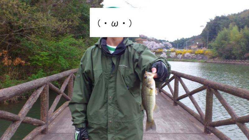 f:id:puchitenshi:20130328022235j:image